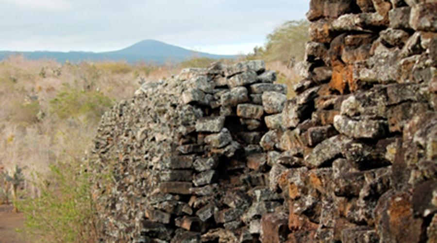 Muro De Lagrimas