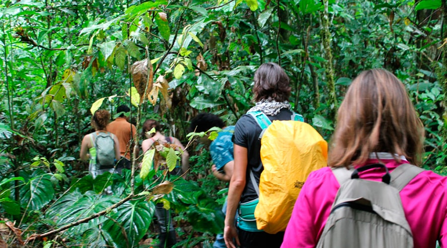 Andes/Amazon Jungle – 12 days