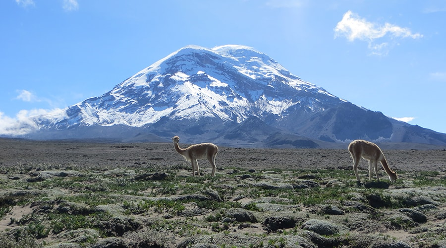 Exploring Ecuador – 19 days